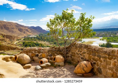 Beautiful view of the national pitcher and a Bush of olive-tree on background of the valley of the river Kura in antique cave city Uplistsikhe, near Gori, Shida Kartli, Georgia, in a Sunny sammer day.