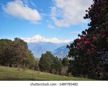 Beautiful view of nature in Nepal