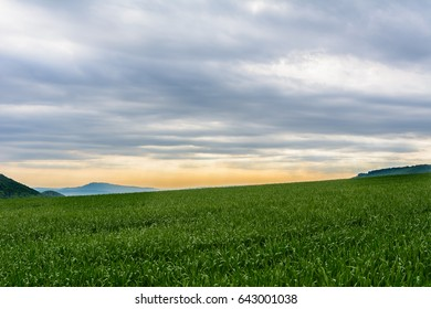 Beautiful view in nature on morning wit field and cloudy sky