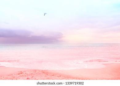Beautiful view of the ocean coast in trendy colors