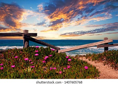 beautiful view of the ocean with wildflowers and wooden fence