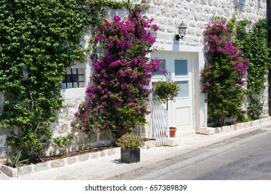 Beautiful view of old white brick wall with flowers and wide doors