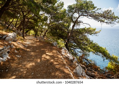 Beautiful view on Adriatic Sea from mountain path in forest.Travel destination for hiking tour.Popular tourist destination for summer vacation travel.Pine trees grow on rocky mountain.Countryside view