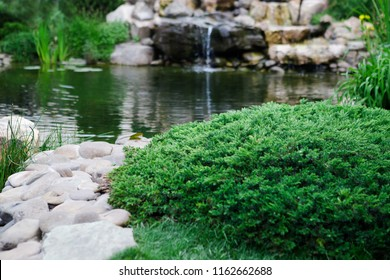 Beautiful view on backyard with landscape design, fresh green grass and pond. Landscaping in the garden, concept of relax and summer season.