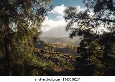 beautiful view on lake and mountains on gran canaria island, spain