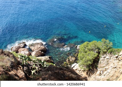 Beautiful view on the Mediterranean Sea. Monaco. Nature