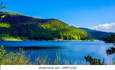 Beautiful view on mountain lake in front of mountain range. View of Abant Lake. Glorious lake landscape. The collaboration of blue and green. Multiple colors and amazing lake scenery. Leisure time.