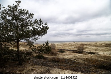 Beautiful view on sand dunes of the Curonian spit in a cloudy day. Nida in Lithuania and Kaliningrad region in Russia
