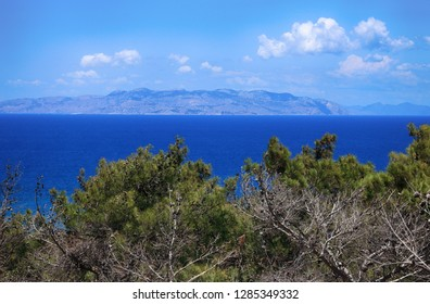 Beautiful view on a sunny summer day on the branches of pine trees, the blue sea and the mountains in the distance