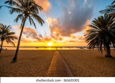 Beautiful view on Teresitas beach near Santa Cruz de Tenerife with palms and foot path on the sunrise