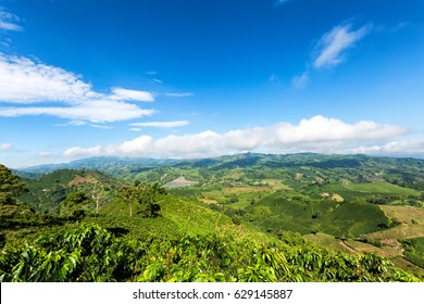 Beautiful view on the top of a mountain on a coffee plantation looking out towards the town of Chinchina, Colombia.