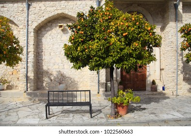 Beautiful view with orange tree and bench in picturesque village Laneia (Lania), Cyprus