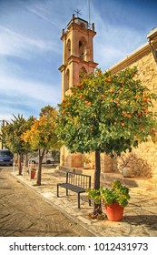 Beautiful view with orange trees and church in picturesque village Laneia (Lania), Cyprus