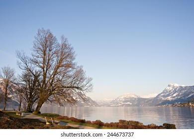 Beautiful view over lake and mountains on a park in Buochs, Switzerland.