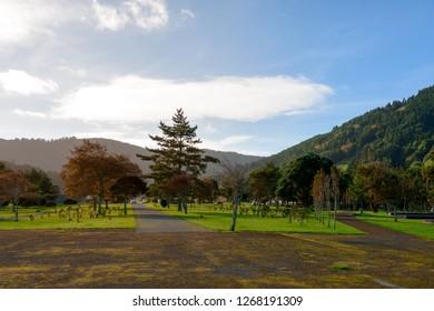 Beautiful View over Sete Cidades Park, Azores
