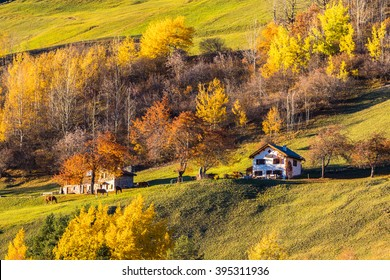 Beautiful view of peaceful house on the swiss alps in the autumn sunlight at dusk, Filisur, canton of Grisons, Switzerland.