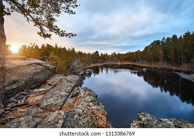 Beautiful view of Pine trees at Lake Saytankol in forest of Karkaraly national park at sunrise in Central Kazakhstan