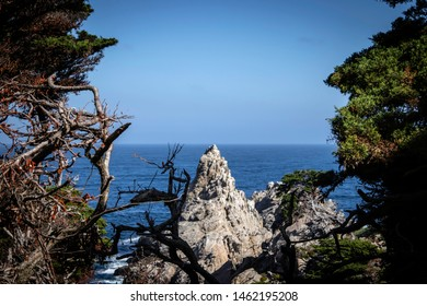 A beautiful view at Point Lobos State Natural Reserve in Monterey, California.