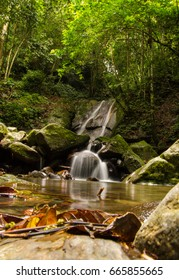 beautiful view of river, waterfall and cascade of Borneo forest