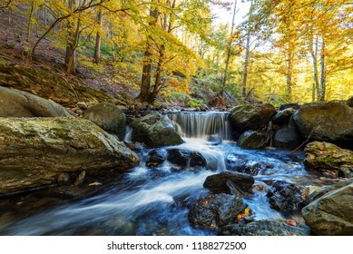 Beautiful view of a river with an waterfall in the forest.