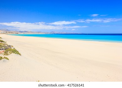 beautiful view of the sandy beach, on a background of blue ocean