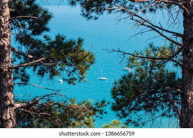 Beautiful view of the sea and three sailing ships, Sightseeing from tree branches around