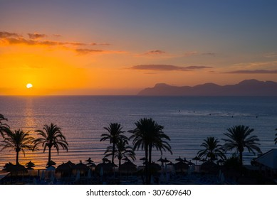 Beautiful view of the sky, sunset, palm trees, beach