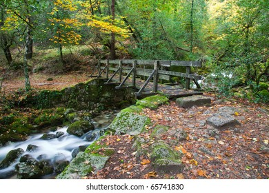 Beautiful view of a small wooden bridge over a river in the woods in Geres National Park, in the north of Portugal.