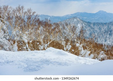 Beautiful view from snow covered moutain at Sapporo, Kokusai, Japan