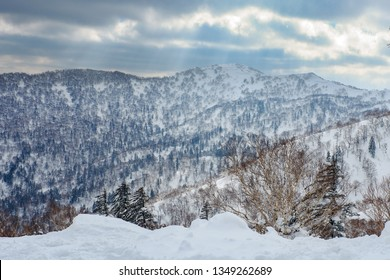 Beautiful view from snow covered moutain at Sapporo, Kokusai, Japan.
