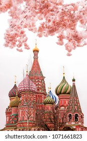 beautiful view of St. Basil's Cathedral. The bloom of Sakura in Moscow. spring season. Russia, the Kremlin Moscow spring. Moscow, April 2018.