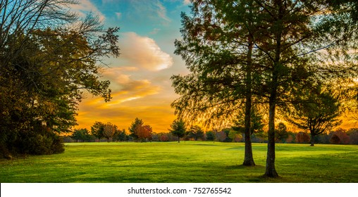 Beautiful view of sunrise through the trees on a field