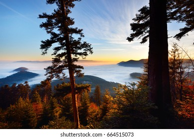 Beautiful view of a sunset in the mountains from the forest. French Alsace, Vosges mountains