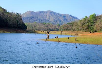 Beautiful view of thekkady lake and periyar tiger reserve forest, Thekkady, Idukki District, Kerala, India. A famous tourist place in Kerala