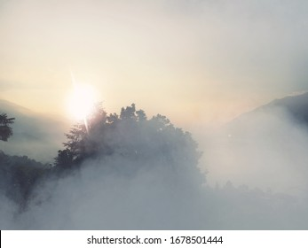 The beautiful view of the trees and mountains on a foggy day with the sun in the sky
