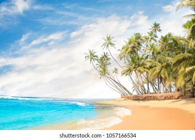 Beautiful view of the tropical beach of Sri Lanka on a sunny day