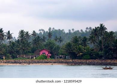 Beautiful view of tropical coast in Mirissa, Sri Lanka