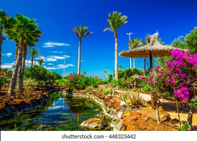 Beautiful view to tropical island resort garden with palm trees, flowers and river on Fuerteventura, Canary Islands, Spain, Europe.