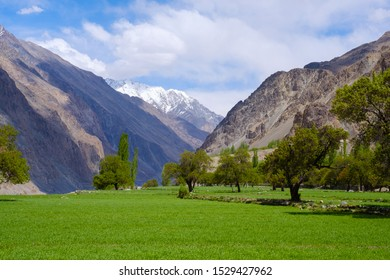 Beautiful view of Turtuk village. Turtuk is the last outpost of India. Located in Leh district, Ladakh region, Jammu and Kashmir, India.