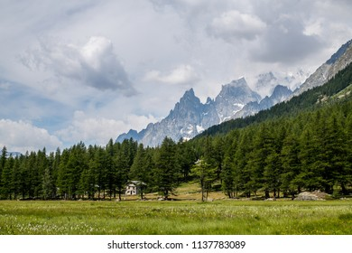 A beautiful view of Val Ferret near Courmayeur in the Italian Alps. A forest of evergreen coniferous trees surround a mountain chalet. In the backgroud the peaks of Mont Blanc and Dente del gigante