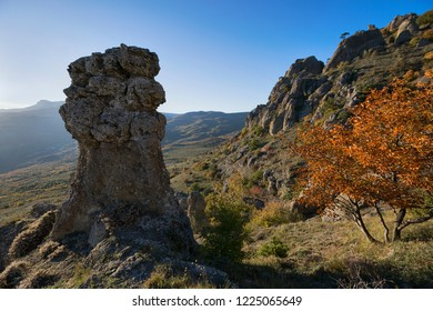 Beautiful view in the Valley of stone ghosts in the mountains Demerdzhi and yellow tree in the autumn Crimea