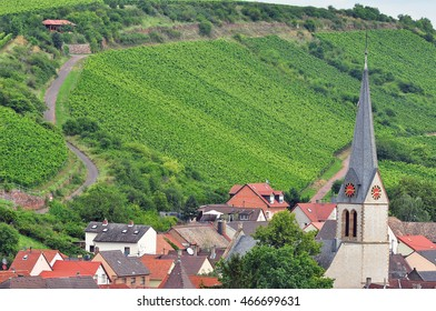 Beautiful view of the vineyards with the church  in the valley.