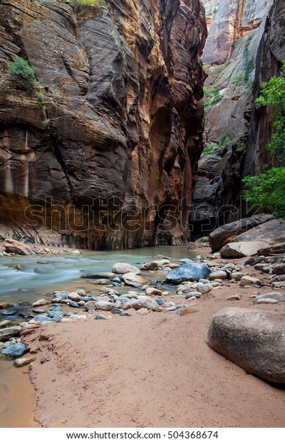 Beautiful view of the Virgin River in the Narrows, Zion National Park, Utah