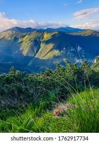 beautiful viewpoint to Retezat Mountains from Piule Mountains, Romania