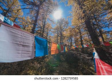 Beautiful Viewpoint of  Yading Natural Reserve in  Autumn season, Daocheng, Sichuan - China