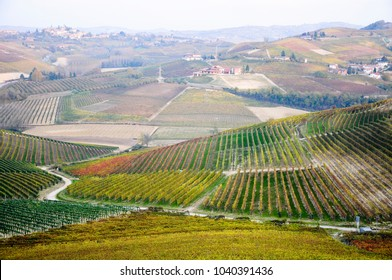 the beautiful views of the barbaresco area,italy