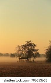 Beautiful views, fields and fog