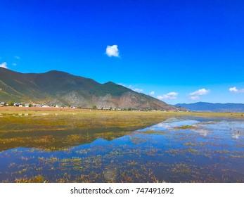 beautiful views over the napahai lake during autumn with a stunning blue sky at shangri la yunnan
