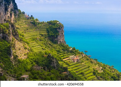 Beautiful views from path of the gods with lemon tree fields, Amalfi coast, Campagnia region, Italy