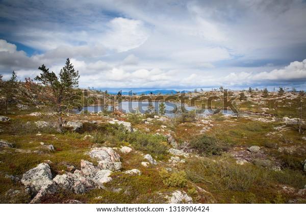 Beautiful views from Sarkitunturi fell to Pallas-Yllas national park. Sarkitunturi is very popular for hiking and skiing activities on summer and winter seasons